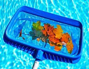 regular-pool